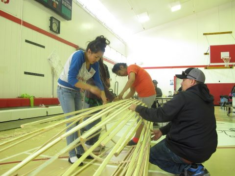 Building fish traps during the 2014 Culture Week